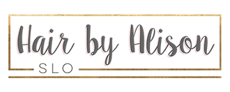 1422474922 Alison Gingg Logo resized.png