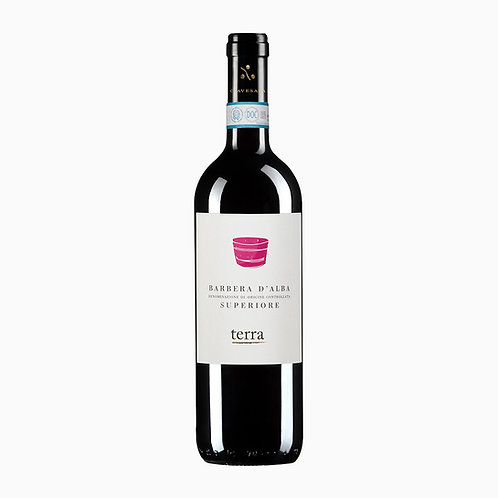 Vinho Barbera D'Alba Superiori Terra