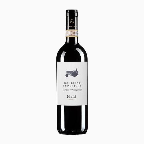 Vinho Dogliani SuperioreTerra