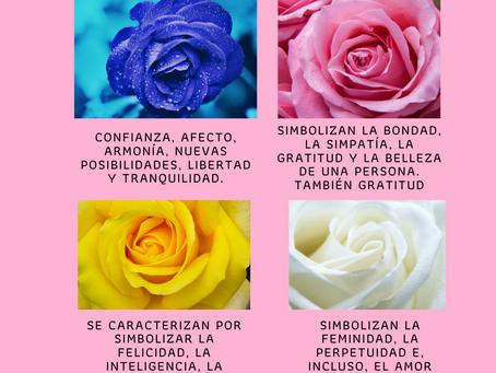 Por que regalar rosas en este San Valentín especial