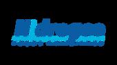logo_hidrogeo.png