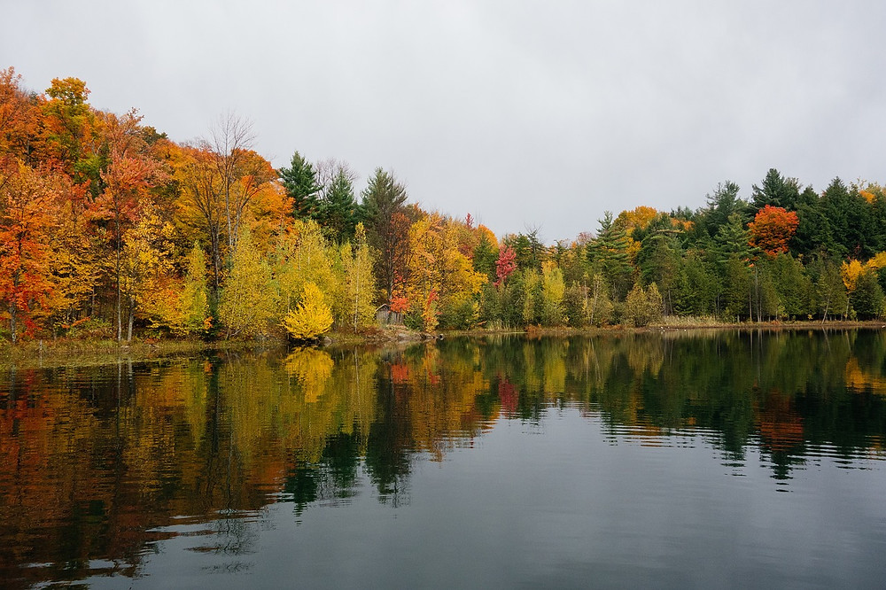fall color changes in minocqua