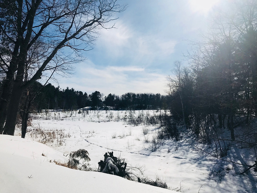 nitschke's northern resort western edge