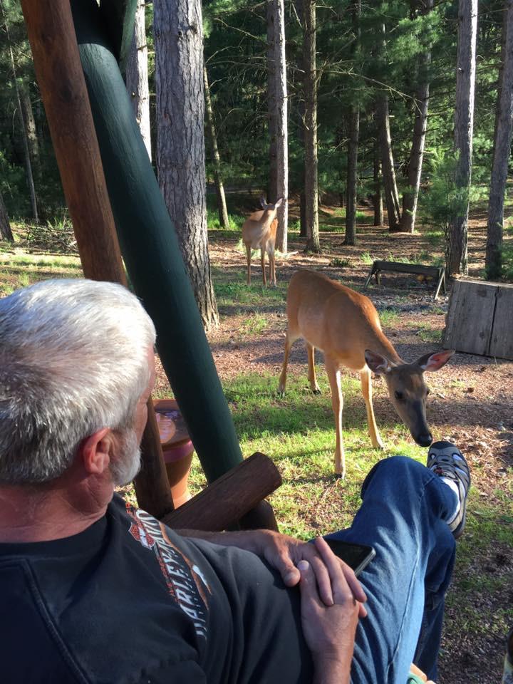 deer next to guest foot