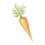 carrot spice and dip