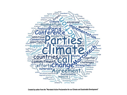The Ups and Downs of the Climate Negotiations