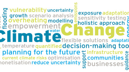 Scenario Analysis: An innovative tool for resilience in the face of the low-carbon transition