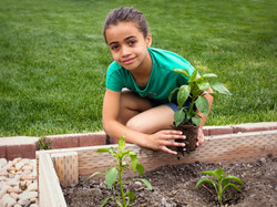 girl-planting-plant-in-garden (1)