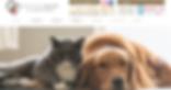 スクリーンショット 2019-01-06 12.41.36.png