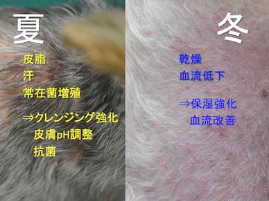 皮膚科医のQ&A ~vol.9~ 「季節によってシャンプーを使い分ける?」