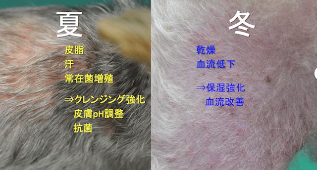 犬 アレルギー 皮膚