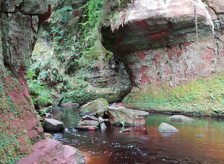 Finnich Glen - Also known as the Devil's Pulpit