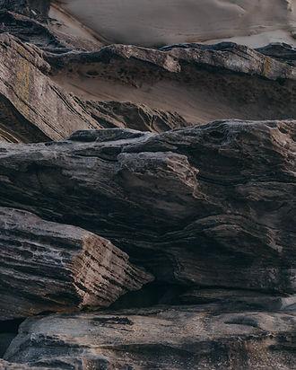 pexels-daria-shevtsova-2029269.jpg