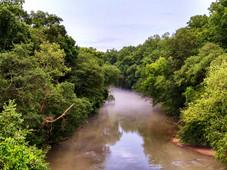 rta filmworks - lifestyle collection_fog river