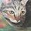 Thumbnail: Acrylic Pet Portrait 14x18