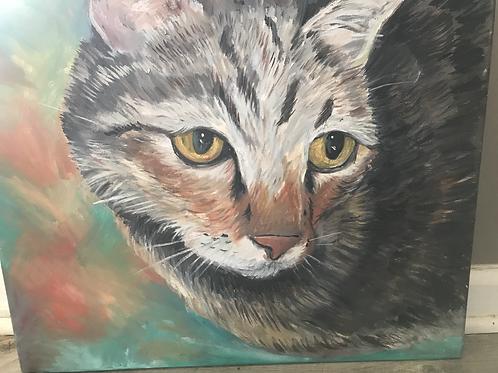 Acrylic Pet Portrait 14x18
