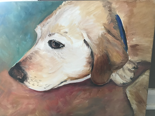 Acrylic Pet Portrait 11x14