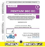 Pentium 960