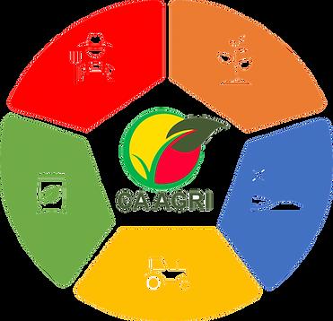 Cercle de services - copie.png