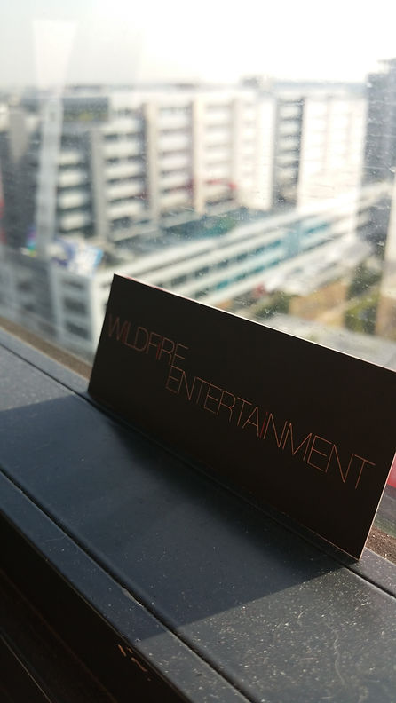 Wildfire Entertainment - Event Entertainment Singapore
