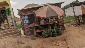 Впечатления от Уганда
