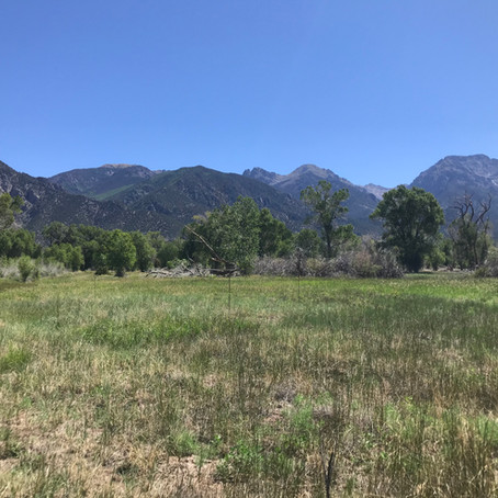 The Baca Refuge Acquires Important New Land