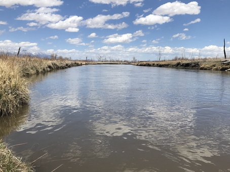 SLVEC is Collecting Critical Baseline to Help Protect a Vital Reach of the Rio Grande
