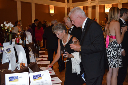 Silent auction at A Starry Night raises money for deserving organizations