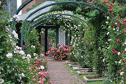 e m mills garden.jpg