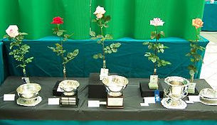 trophy table.jpg