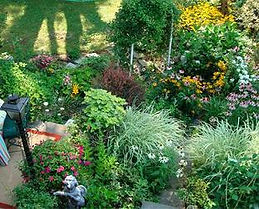 Mary McKnights garden.jpg