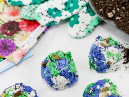 Crafts To Keep The Family (and you) Sane! SEED BOMB!
