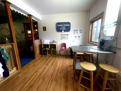 Coastal Critter Clinic