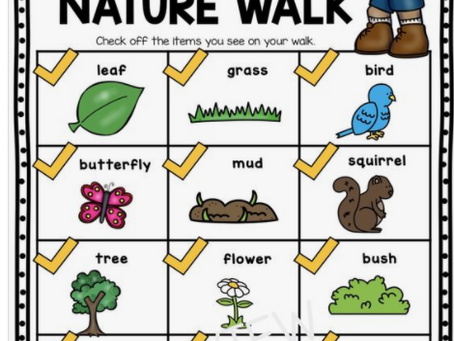 Nature Walk for Little Ones