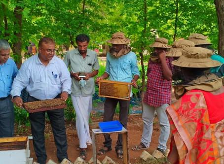 Training on Beekeeping