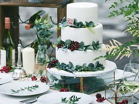 cake2p_edited.jpg