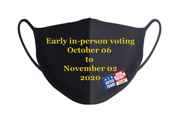 I Voted Today_A.png