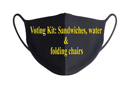Voting Kit Aug 28.png