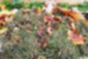 Чеснок озимый под мульчей