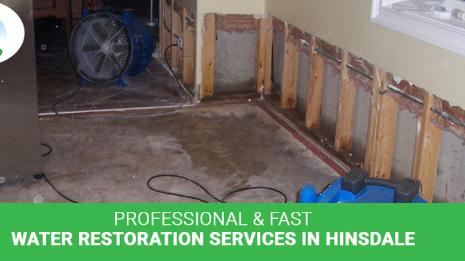Why choose professional Hinsdale water restoration services?