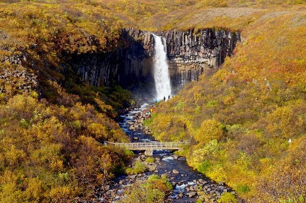Vista panorámica de la Cascada Negra de Svartifoss en Islandia