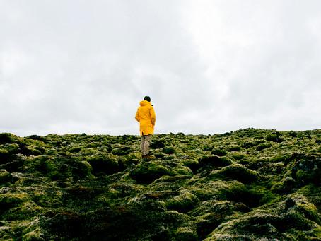 Eldhraun - Campo de lava y musgo al sur de Islandia