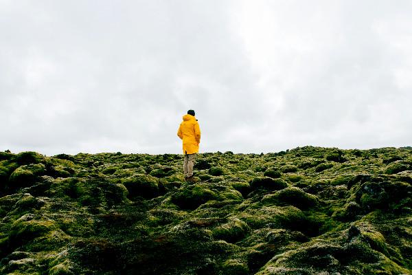 Turista contemplando el musgo islandés - Eldhraun - Campo de lava y musgo al sur de Islandia