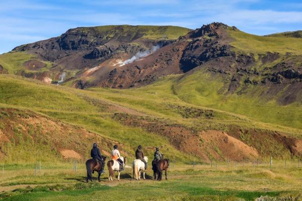 Cuatro turistas montando caballos islandeses por la isla - Paseos a caballo en Islandia
