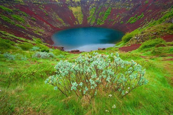 Vegetación de Kerid - Cráter y lago volcánico en Islandia