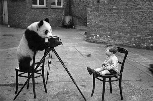 RSVP: PHOTOGRAPHER