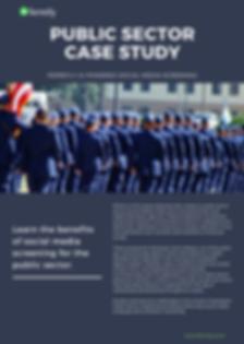 Public Sector Case Image.png