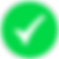 Run Check Icon green.png