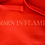Thumbnail: Born in Flames Hoodie (Red)