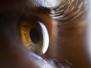 Ojos con entrañas